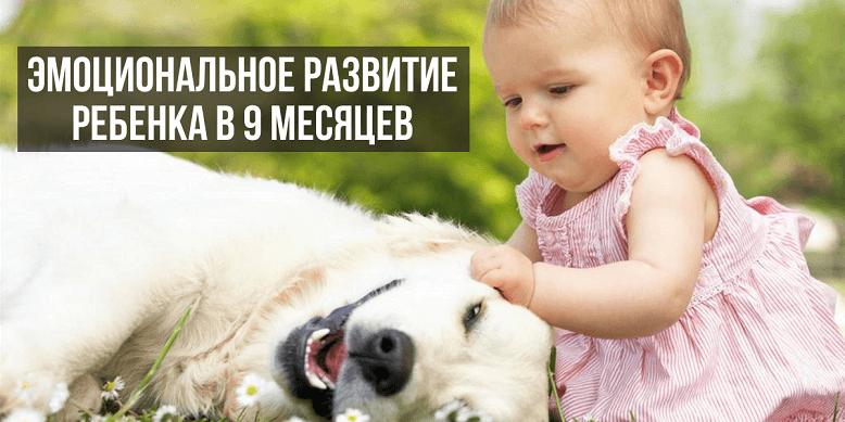 Эмоциональное развитие ребенка в 9 месяцев