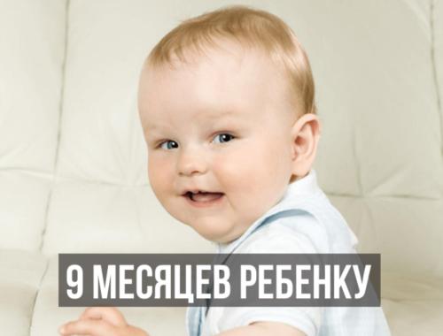 Ребенок 9 месяцев развитие что должен уметь