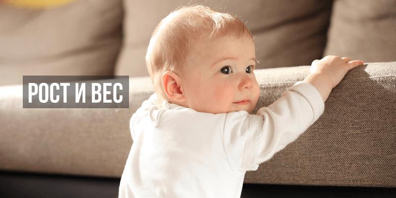 Рост и вес ребенка в 8 месяцев